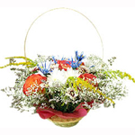 A playful flower basket named after its sweet appearance. For the young at heart and mind, this fresh basket will bring a bounce to the step of its recipient.