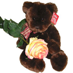 Here is everything you need for a holiday surprise. This gift set contains a plush cuddly stuffed toy and a rose for her.