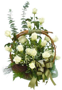 Roses blanches panier
